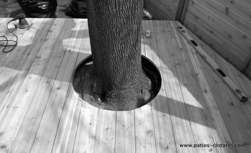 contour d'un arbre pour faire une terrasse basse en bois de cèdre