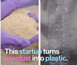 La sciure de bois pourrait être une des solutions au problème mondial du plastique