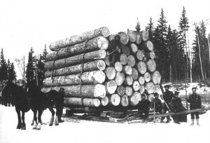 Histoire du bois au Canada - exploitation forestière