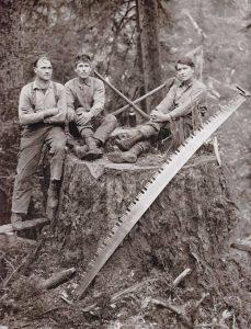 Histoire du bois au Canada - l'Ouest canadien