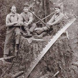 Histoire du bois au Canada - l