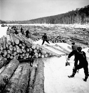 Histoire du bois au Canada - la coupe